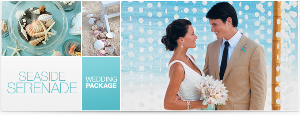 Seaside Serenade Destiantion Wedding Package