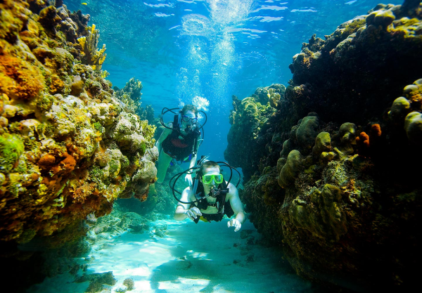 scuba dive antigua included resized 600